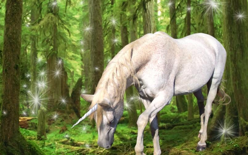 Um unicórnio entre os cavalos