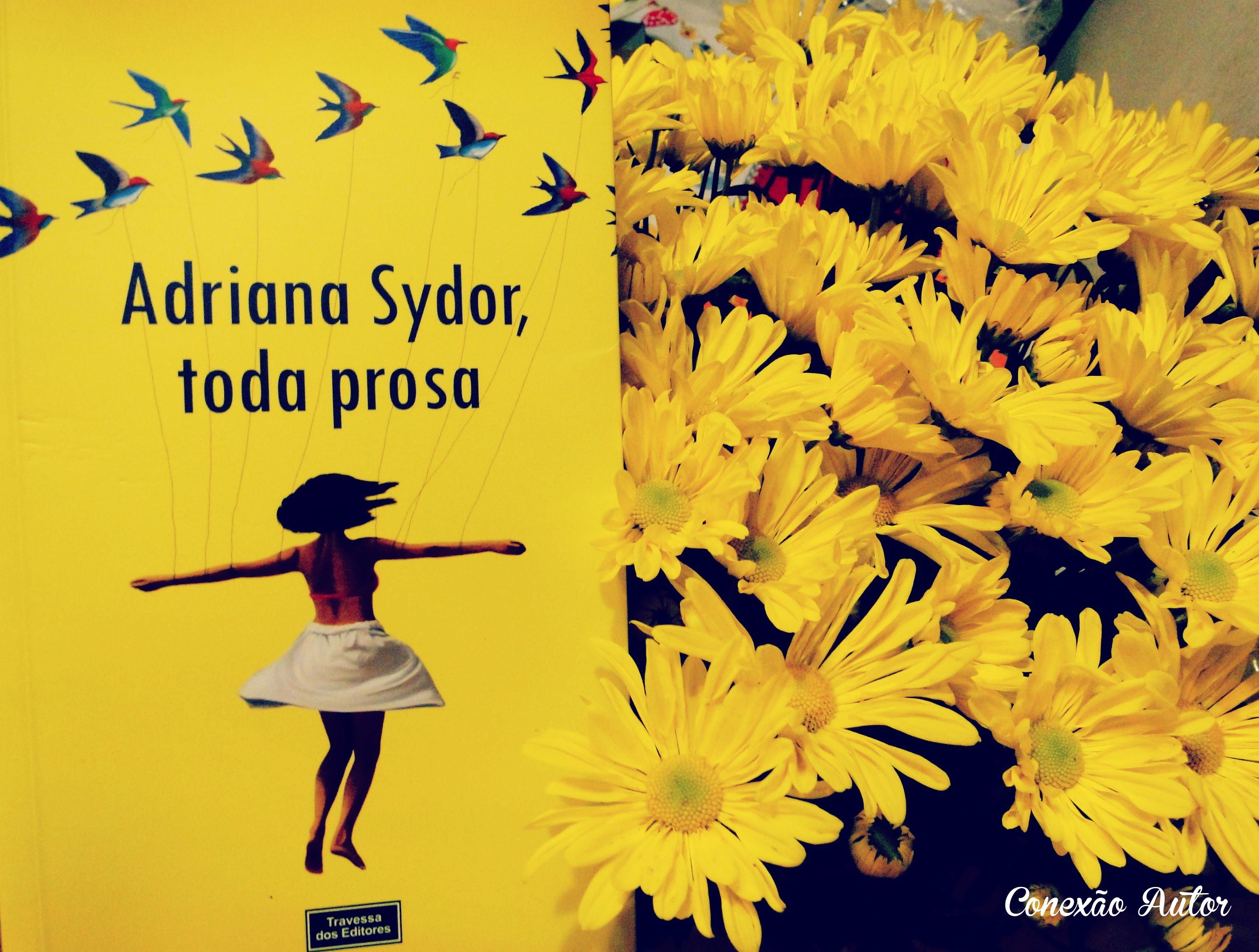Adriana Sydor, toda prosa